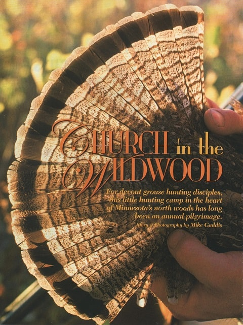 Church in the Wildwood cover